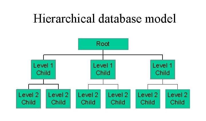 Database management system 1