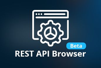 rest api integration
